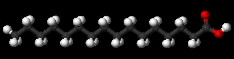 Ácidos graxos: estrutura, tipos, funções, biossíntese 5