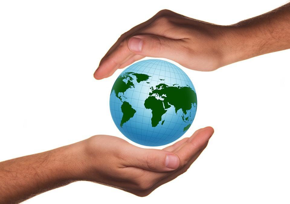 Indicadores ambientais: tipos e suas características 1