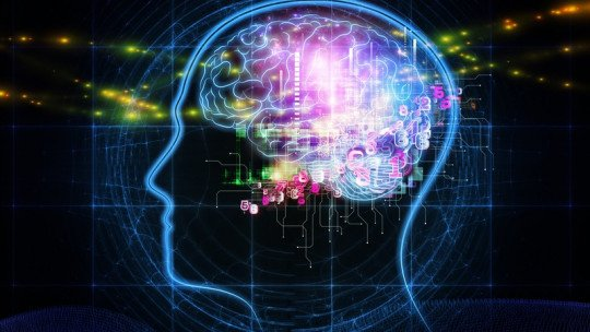"""""""Nós usamos apenas 10% do cérebro"""": mito ou realidade? 1"""