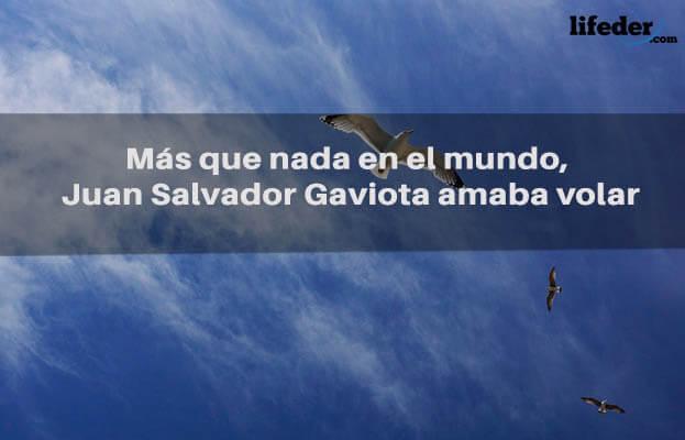 As melhores frases de Juan Salvador Gaviota [com imagens] 17