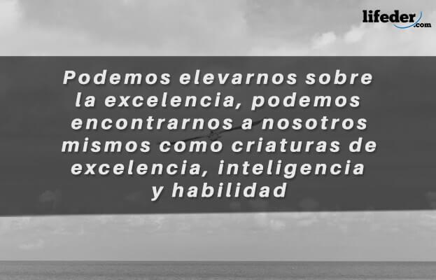 As melhores frases de Juan Salvador Gaviota [com imagens] 22