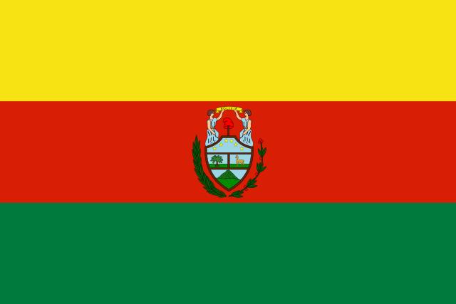 Bandeira da Bolívia: História e Significado 5