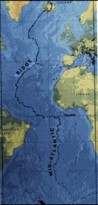 Fundo do mar: características, relevo, tipos, flora e fauna 2