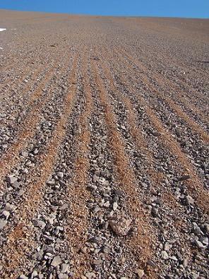 O que é o cuidado do solo e como é feito? 1