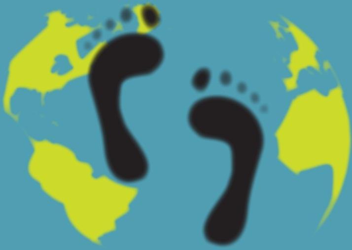 Indicadores ambientais: tipos e suas características 2