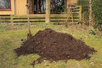 O que é o cuidado do solo e como é feito? 2