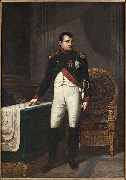 Napoleão Bonaparte: biografia - infância, governo, guerras 21