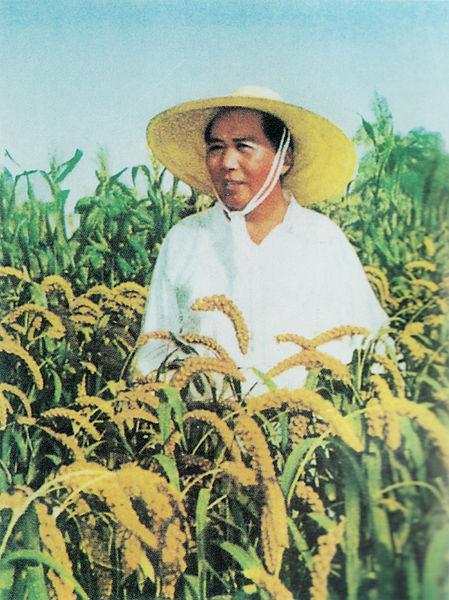 Mao Zedong: biografia do líder comunista chinês 9
