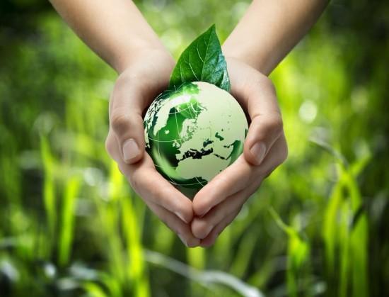 5 usos que podem ser dados aos ecossistemas sem transformar 1