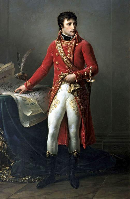 Napoleão Bonaparte: biografia - infância, governo, guerras 14