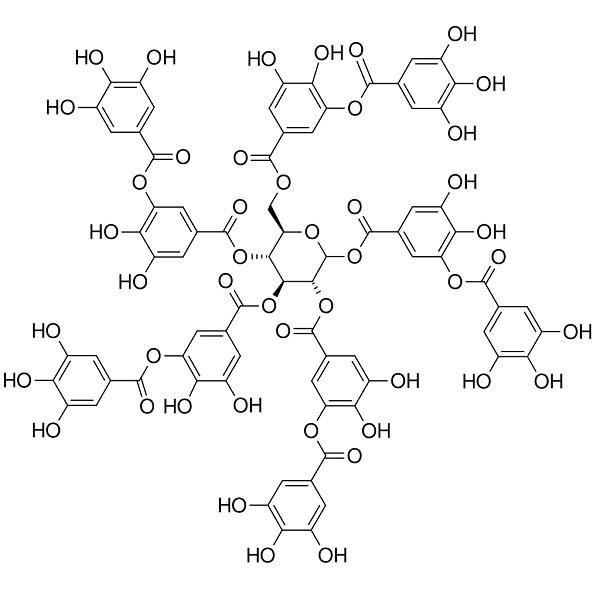 Ácido tânico: estrutura, propriedades, obtenção, usos 2