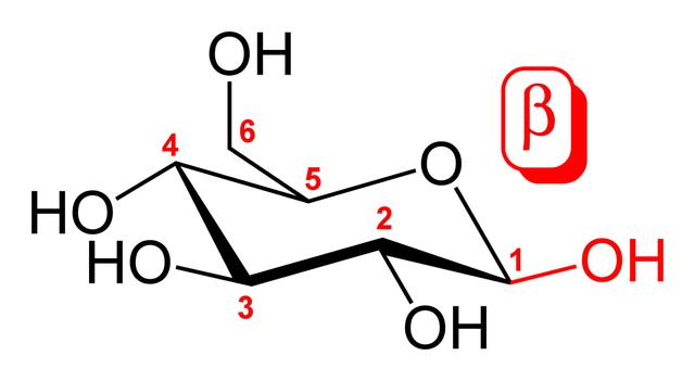 Carbono anomérico: características e exemplos 1