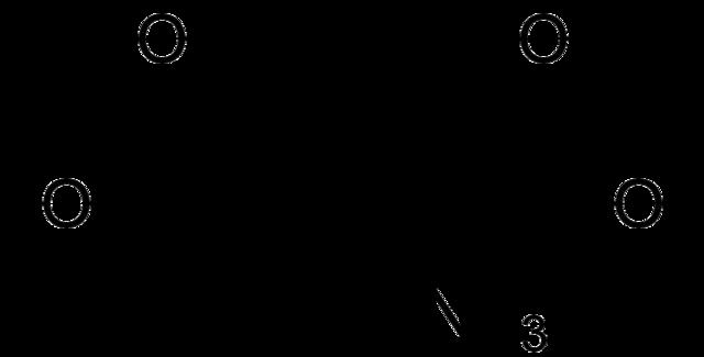 Glutamato (neurotransmissor): síntese, ação, funções 2