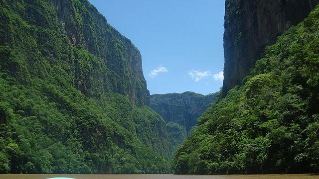 Serra Madre de Chiapas: características, flora, fauna, clima 1