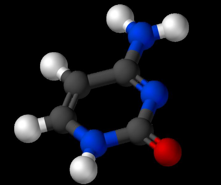 Citosina: estrutura, funções, propriedades, síntese 1