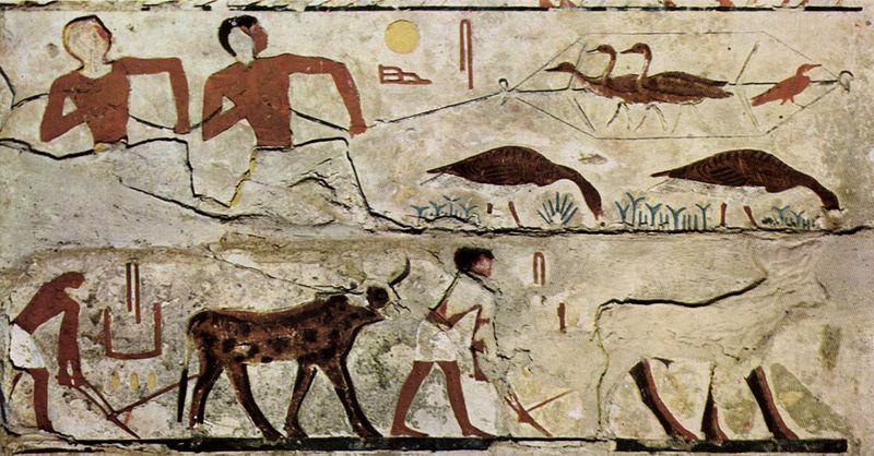 História do Graffiti: Do Início ao Presente 3
