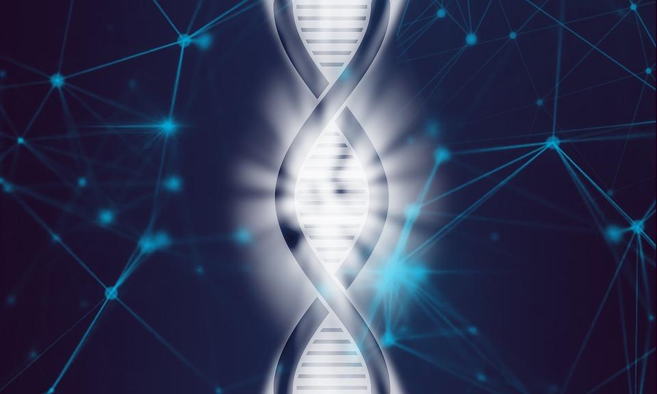 DNA recombinante: técnica, aplicações e fundamentos 1
