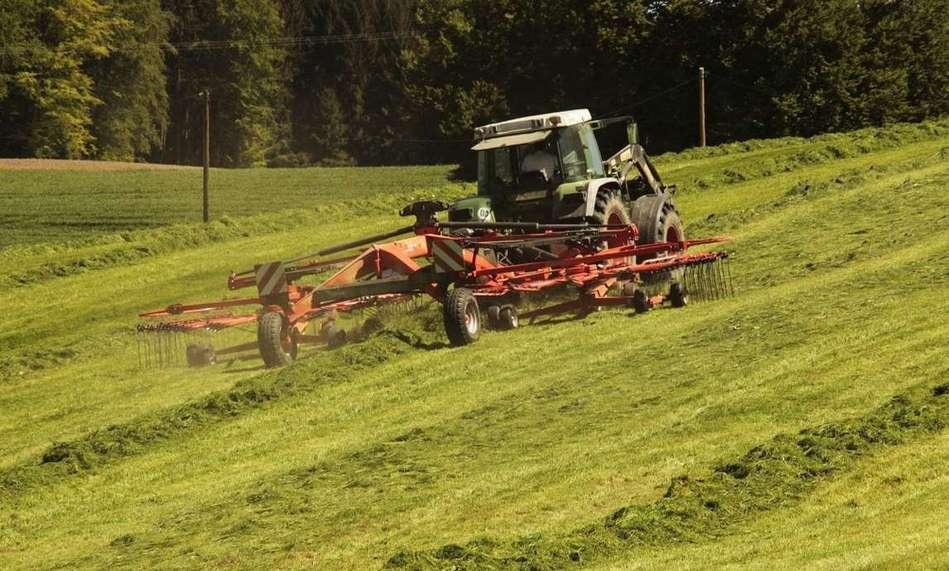 Agricultura comercial: características, tipos e vantagens 1