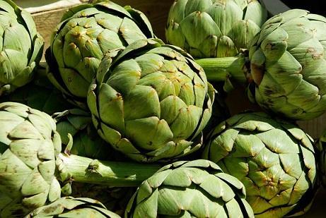 Os 11 melhores alimentos pré-bióticos e seus benefícios 2