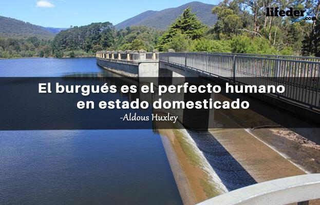 As 100 melhores frases de Aldous Huxley 16
