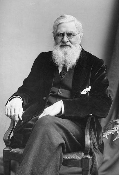 Alfred Russel Wallace: biografia, teoria e outras contribuições 1