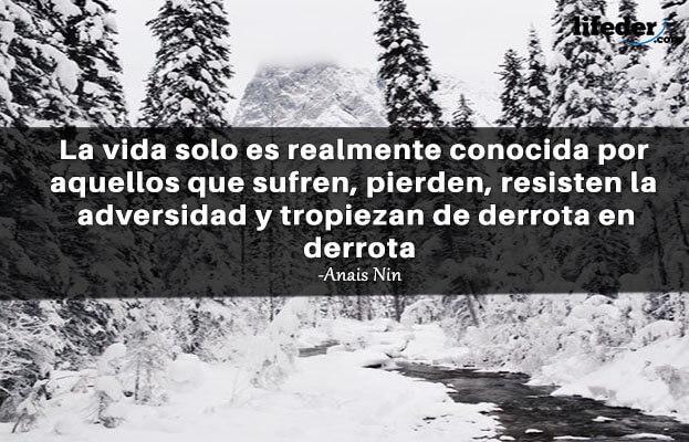 As 100 melhores frases de Anaïs Nin [com imagens] 16