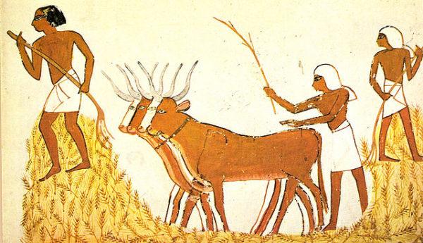 Civilizações agrícolas: características e contribuições 2
