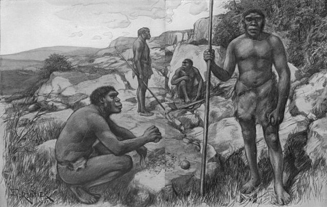 Antropologia Biológica: Quais Estudos, Ramos e Importância 1