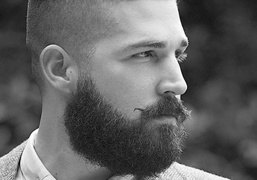 20 tipos de barbas juvenis e adultas (com fotos) 20