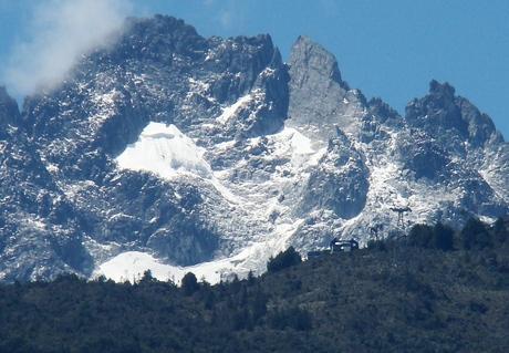 Floresta andina: características, localização, flora, fauna e clima 2