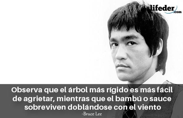 As 100 melhores frases de Bruce Lee [com imagens] 3