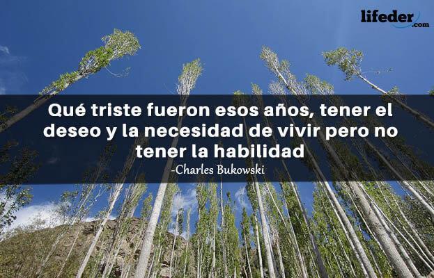 As 100 melhores frases de Charles Bukowski 6
