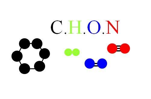 CHON: características comuns, particularidades e moléculas 1