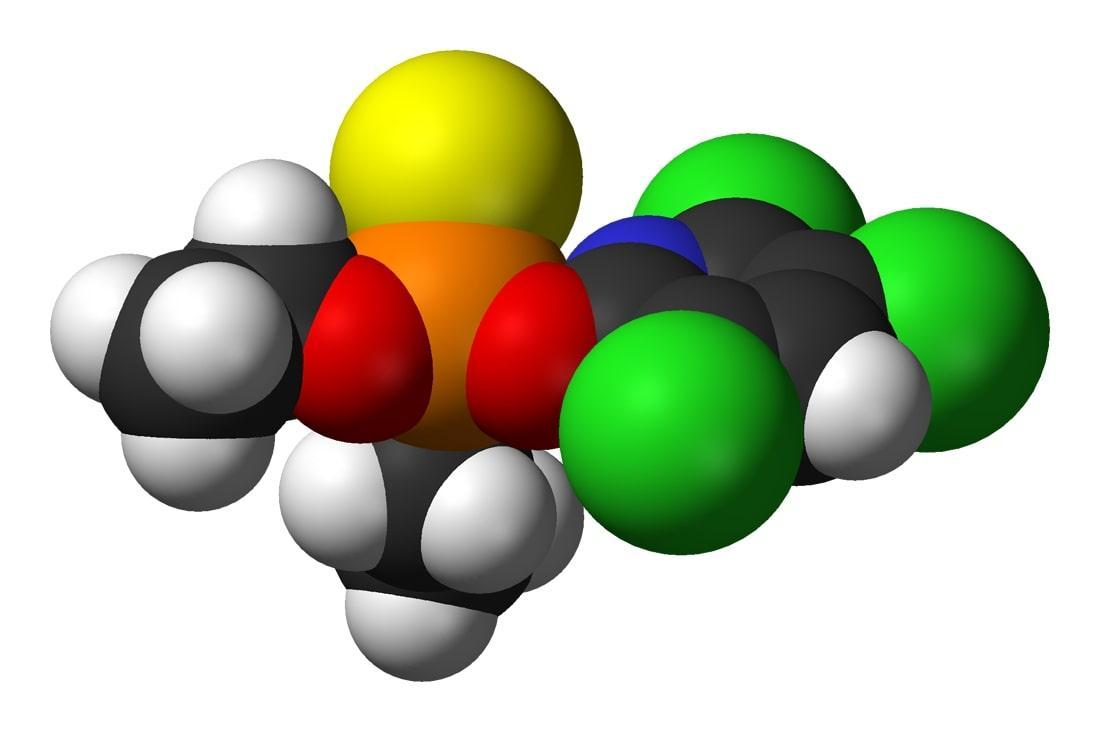 Clorpirifós: aplicações, toxicidade e efeitos 1