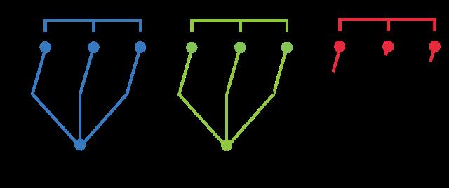 Cladograma: para que serve e exemplos 4