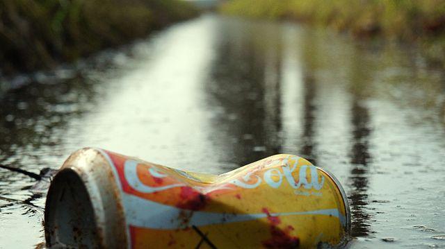 Poluição do lixo: causas, consequências e exemplos 1