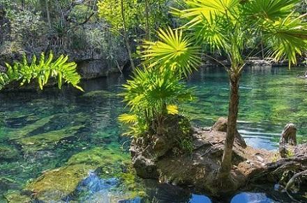 Quais são os componentes naturais do México? 1