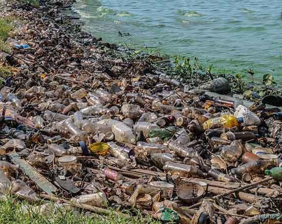 Poluição da água: poluentes, causas, consequências 5