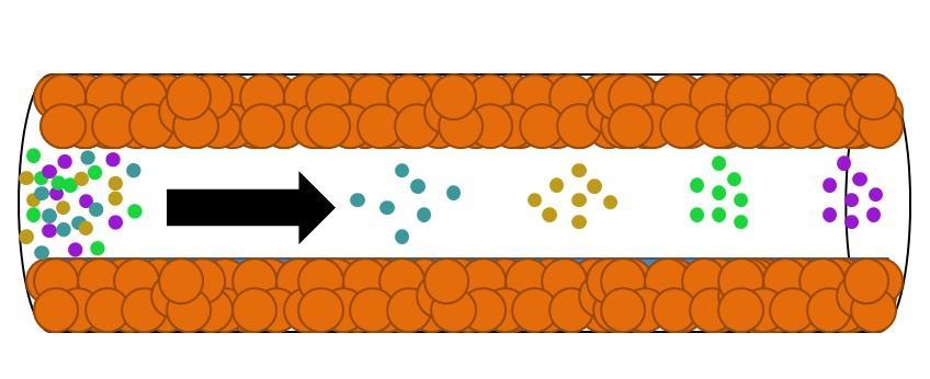 Cromatografia gasosa: como funciona, tipos, peças, usos 1