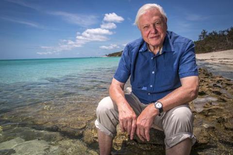 David Attenborough: Biografia e Principais Documentários 1