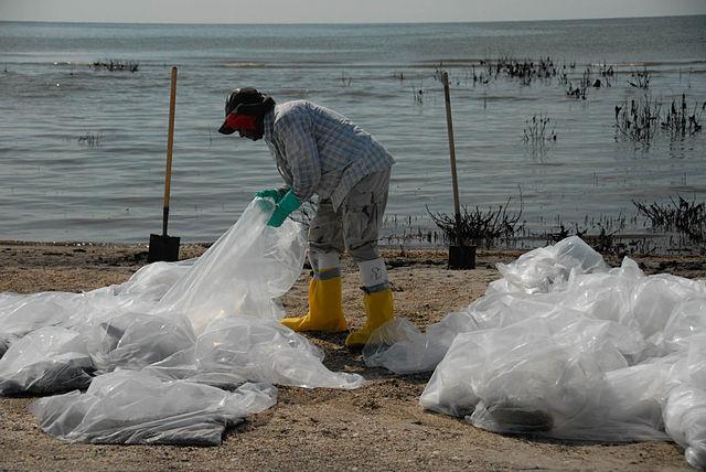 Derramamento de óleo no Golfo do México (2010): causas, consequências 6