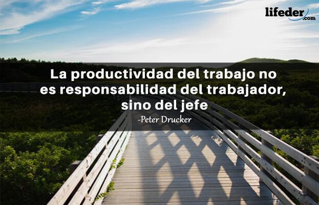 As 53 melhores frases de Peter Drucker [com imagens] 17