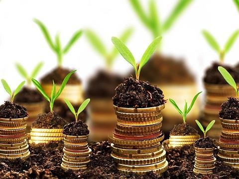 Cenário Econômico de Sustentabilidade 12