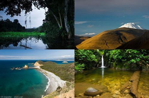 Quais são as ecorregiões do Equador? 1