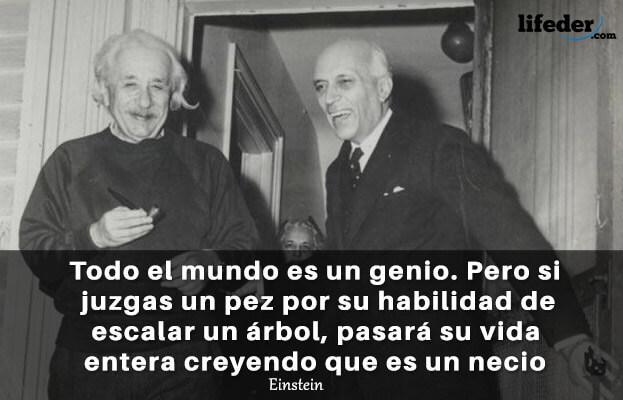 As 200 melhores frases de Albert Einstein [com imagens] 26