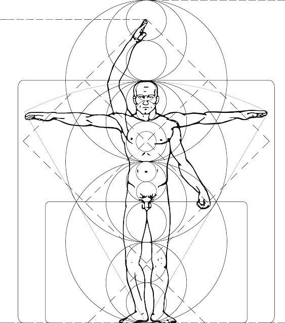 Cefalocaudal: Anatomia, Avaliação e Aquecimento 1