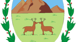 Escudo de San Luis (Argentina): História e Significado 12