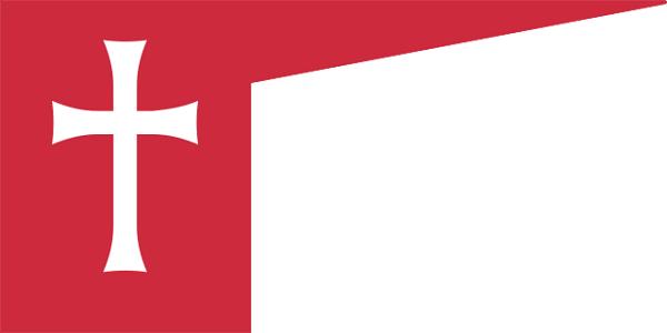 Bandeira da Hungria: história e significado 3