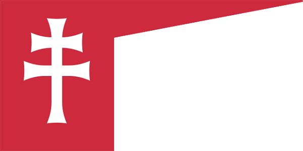 Bandeira da Hungria: história e significado 4