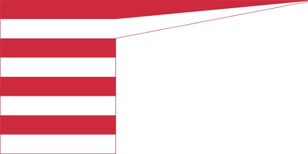 Bandeira da Hungria: história e significado 6
